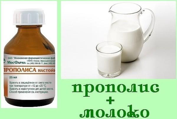 молоко и прополис