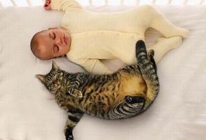 ребенок лежит с котом