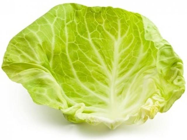 лист капусты