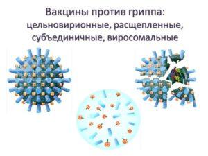 Виды вакцин
